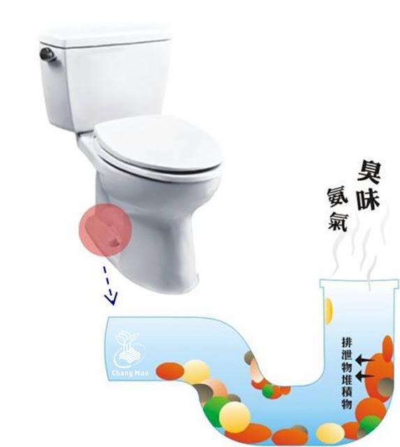 廁所臭味來源