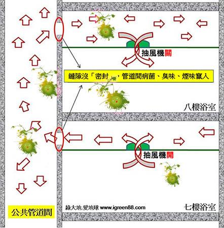 武漢肺炎糞管傳染