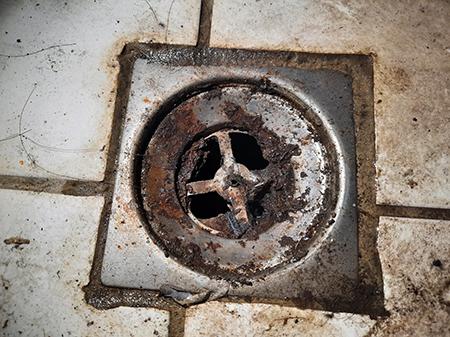 地上排水孔臭