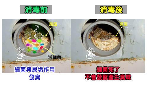 廁所消毒除臭
