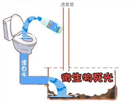 倒消毒水會殺化糞池菌種