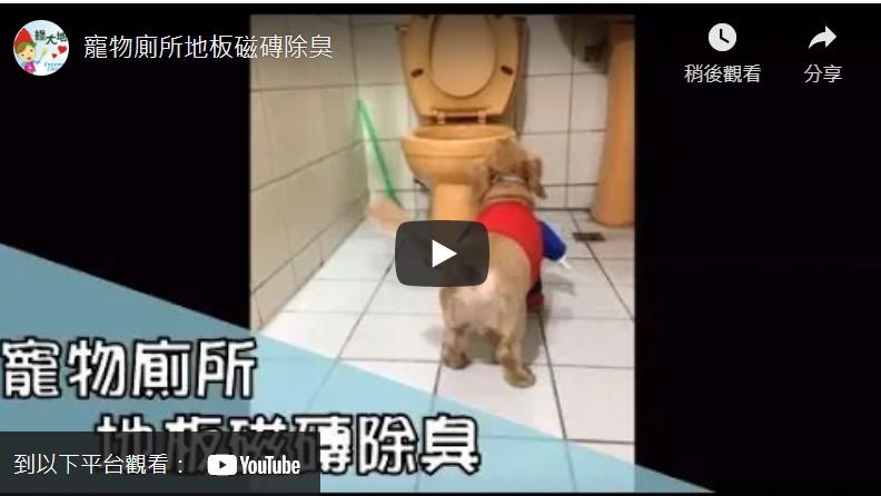 寵物除臭影片